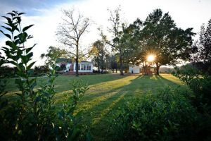 The sun catches The Rand-Bryan House just right for beautiful Raleigh wedding ceremonies